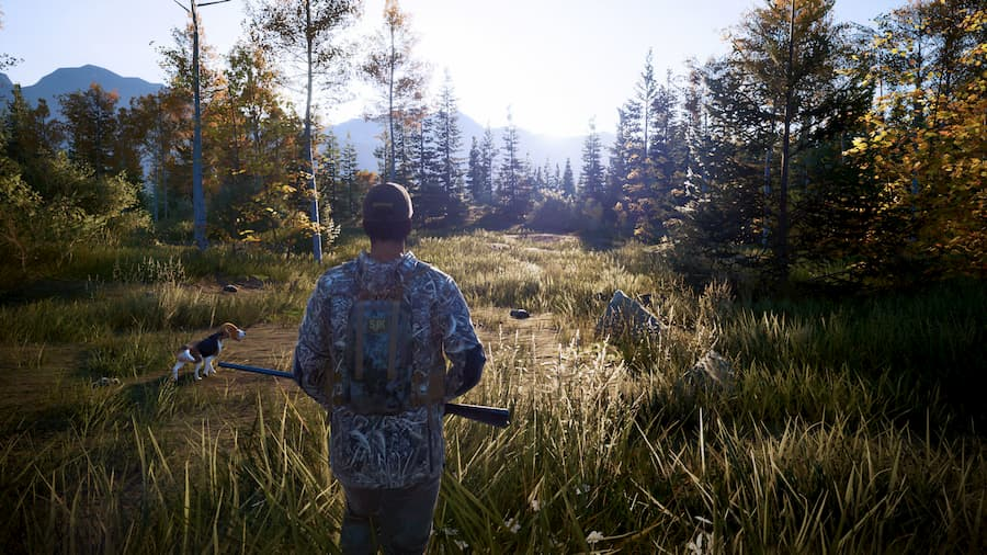 Hunting Simulator 2 (1)