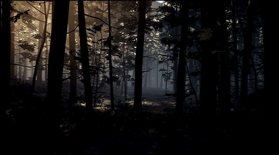 Blair Witch Switch 3 (1)