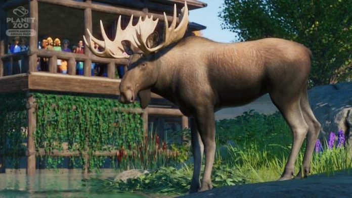 Planet Zoo North American Animal Pack